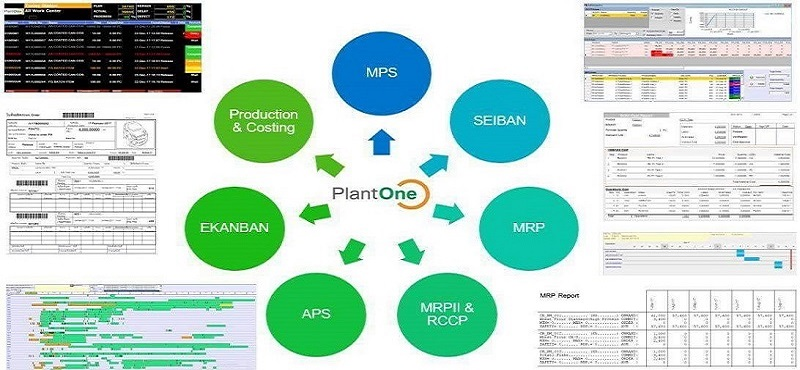 Plant One Company Limited